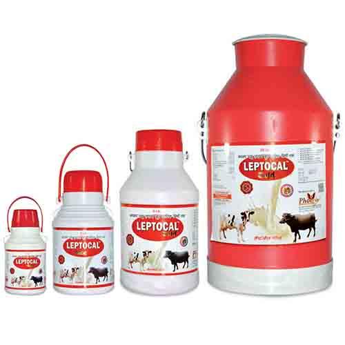 Leptocal Liquid Gold|Buy Online Leptocal Gold Veterinary Medicine Buy Online