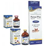 Painac_D,Painac_Plus Piroxicam,paracetamol injection