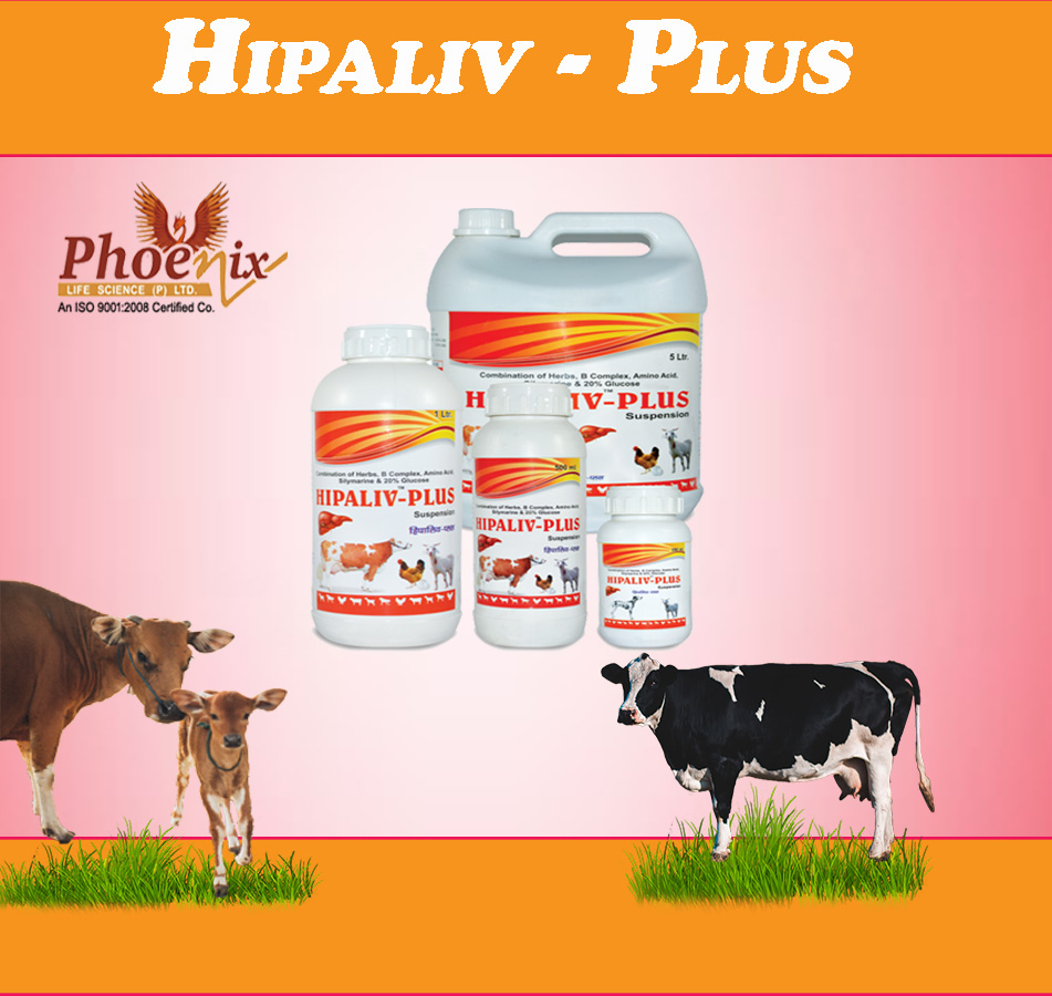 hipaliv plus liver tonic for cattles