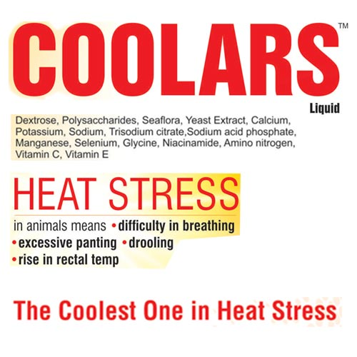coolras liquid-heat stress and boost up immunity-2