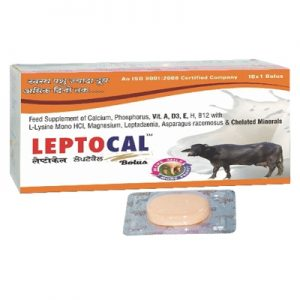 Leptocal Bolus | Leptocal Bolus Suppliers, Distributor in Rohtak, India