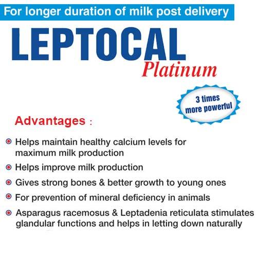 Leptocal Platinum Calcium Buy Online Animal Feed Supplements_2