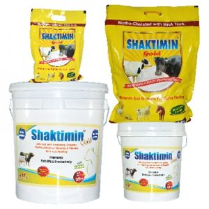 Shaktimin gold feed supplement