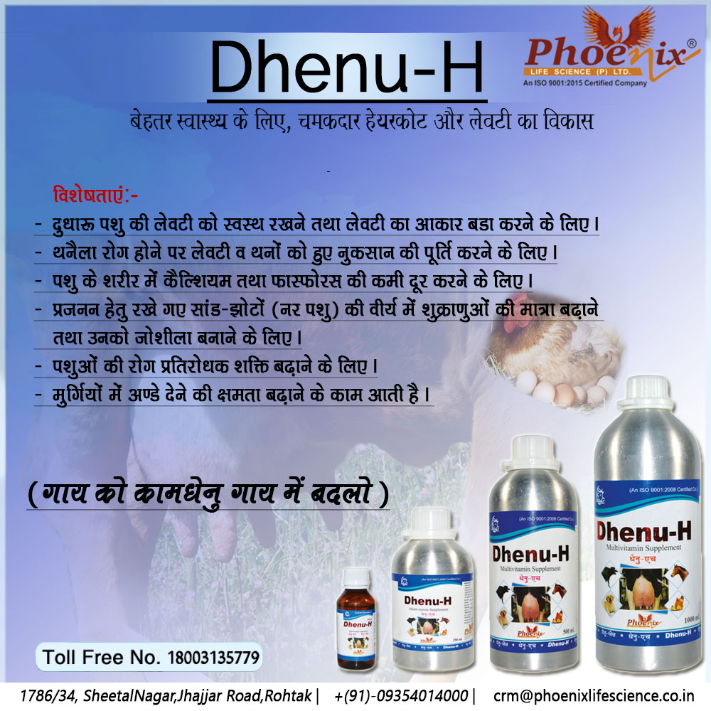 dhenu-H-Effective treatment-of-Bovine-Mastitis-